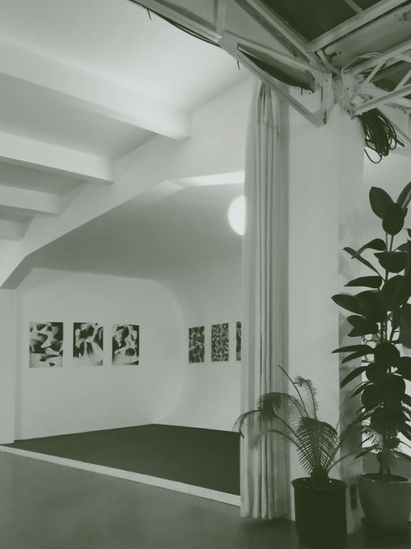 Intérieur du Studio Swiss Miss